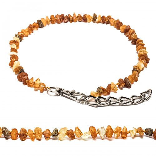 amber collar with metal chain
